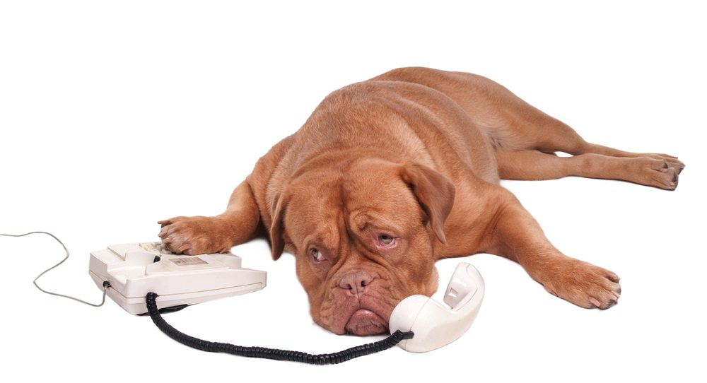 Telefon po godzinach szczytu