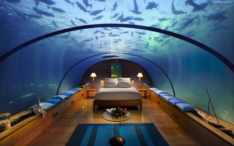223011_podwodny_hotel_dubaj_oceanarium