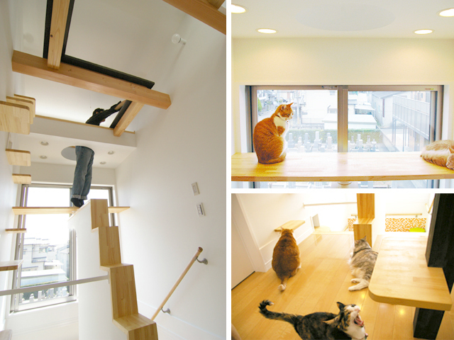 catshouse.jp