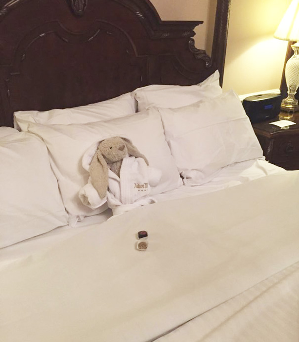 """""""Have to stay in Adare Manor tonight, hopefully my owner will come to collect me tomorrow"""""""