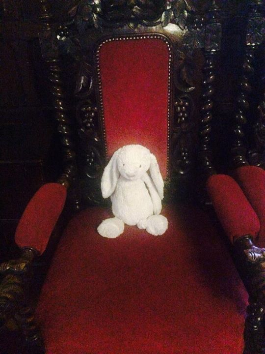 I lost my owner at breakfast in Adare Manor