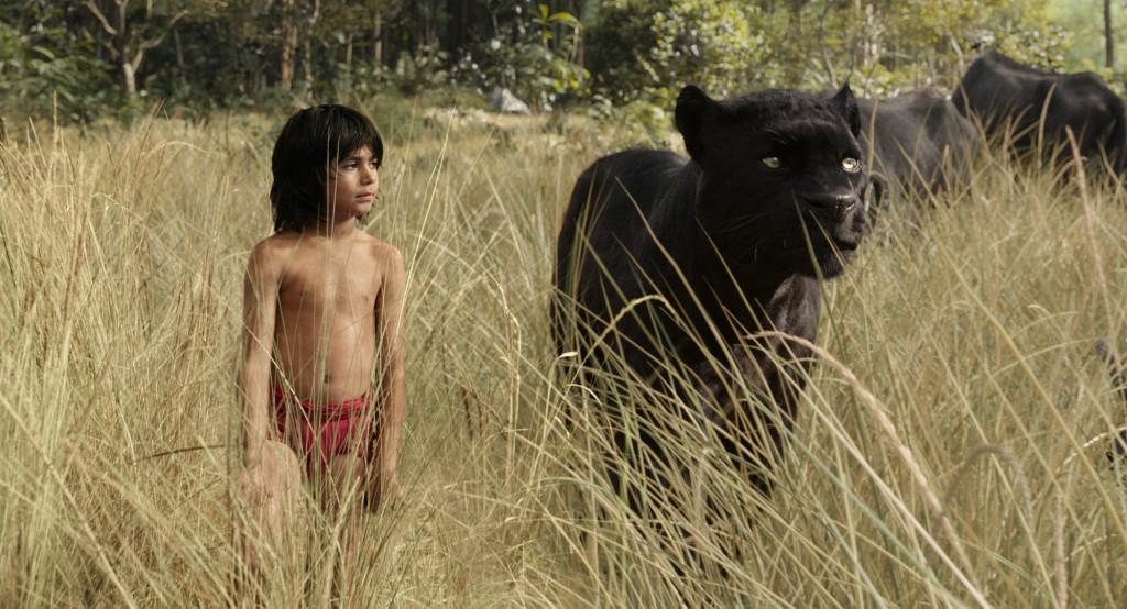Najlepsze filmy 2016? Z pewnością w czołówce! Świetny film dla całej rodziny