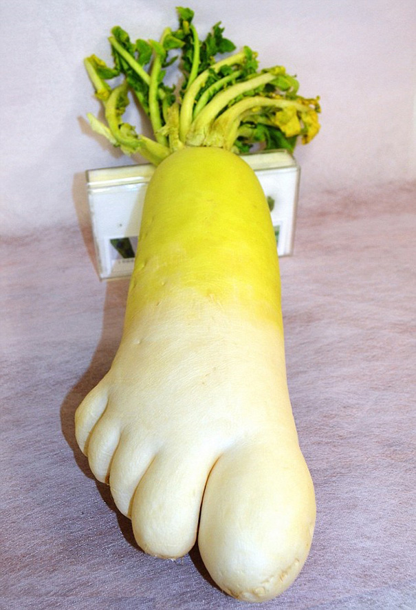 unusual-shape-fruit-vegetables-8__605
