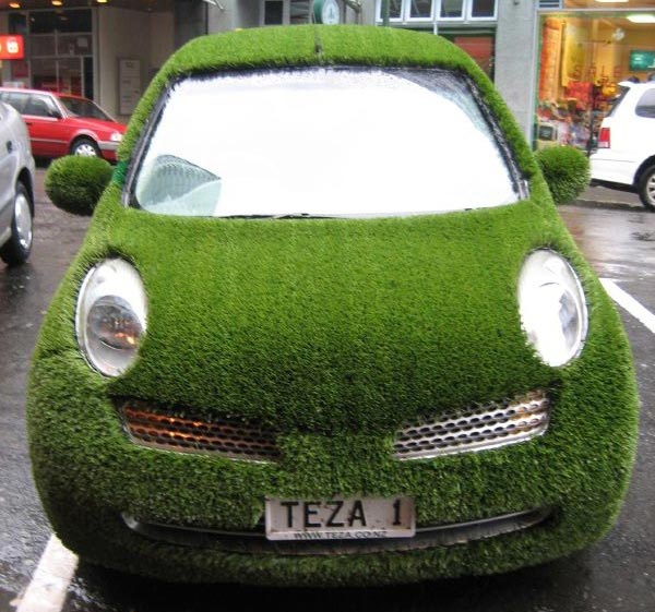 weird-unusual-cars-grass-car
