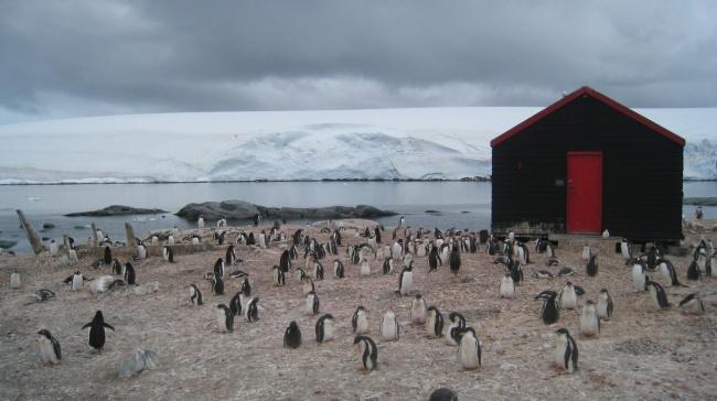 A house in Port Lockroy, Antarctica.