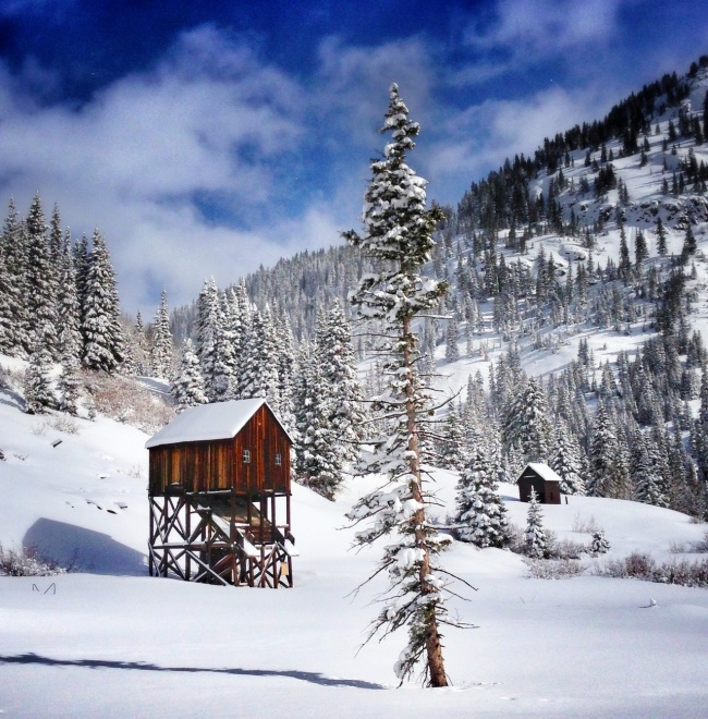 A wood cabin is used as a shelter in case of heavy snowfall. Silverton, Colorado, USA.