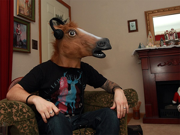 Lateksowa głowa konia