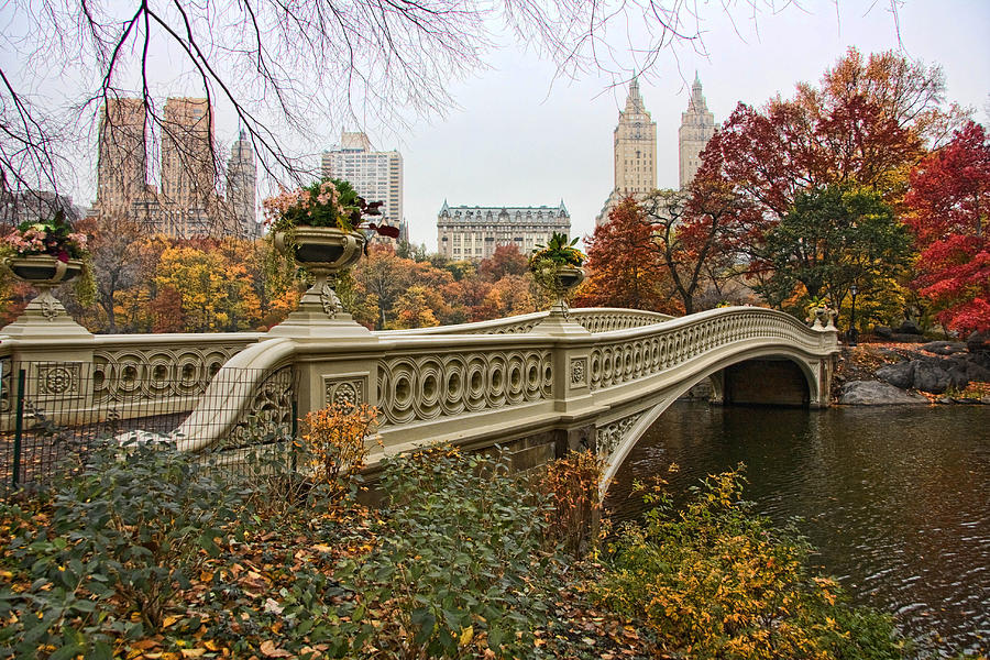 bow-bridge-in-central-park-june-marie-sobrito