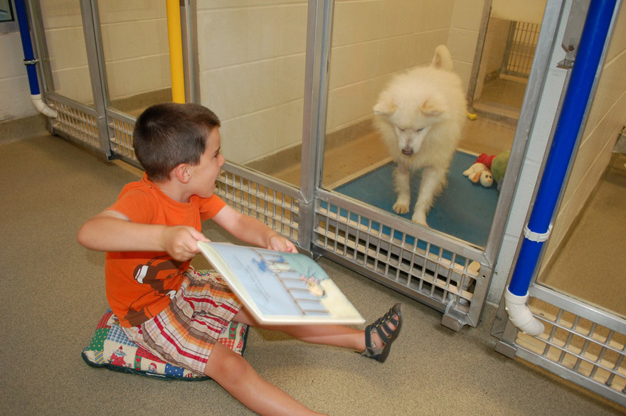 kids-read-shelter-dogs-human-society-of-missouri-8