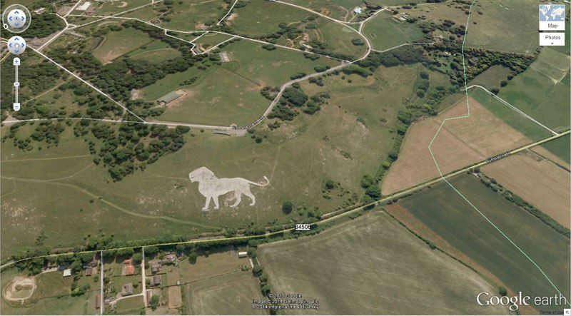 lion-google-earth