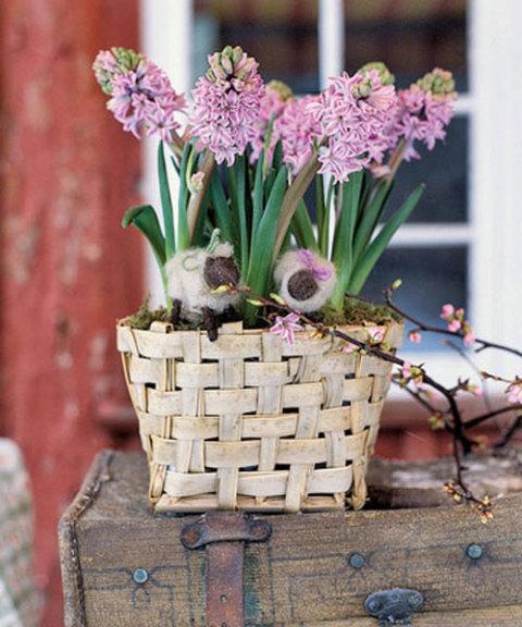 Hyacinths Meadow