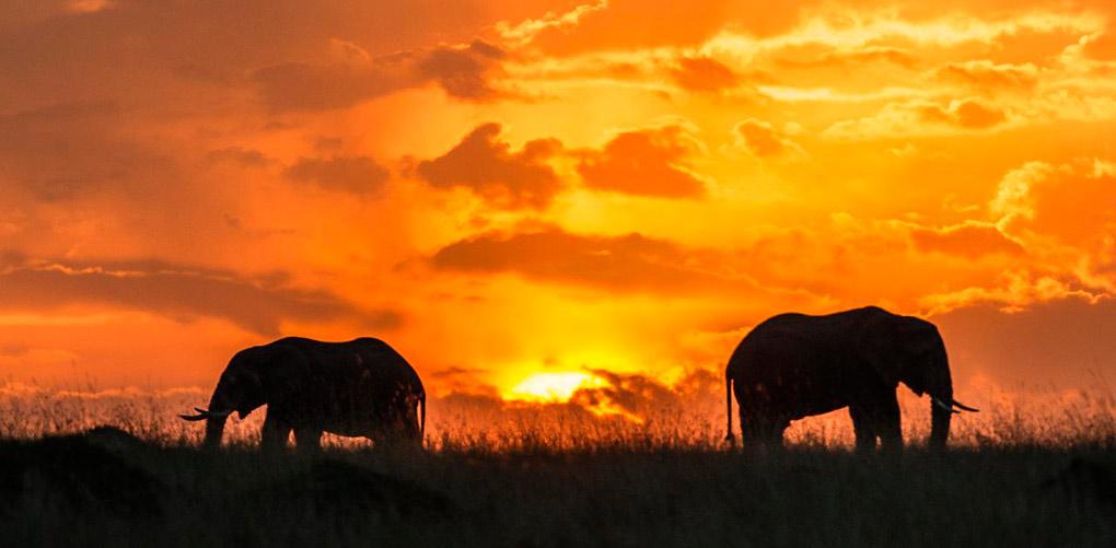 11 najpiękniejszych zachodów słońca