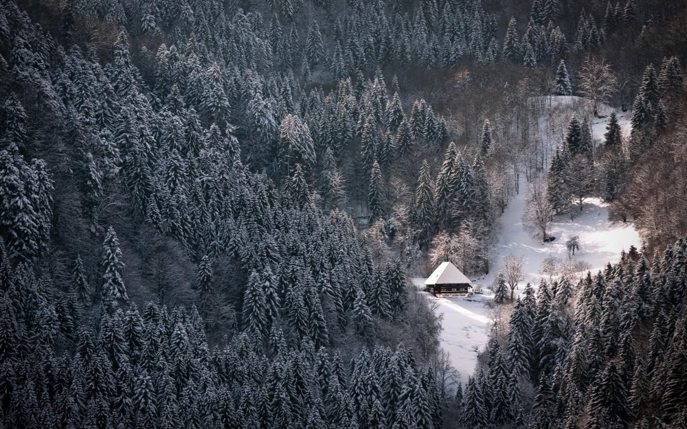 The Black Forest (Schwarzwald), Germany