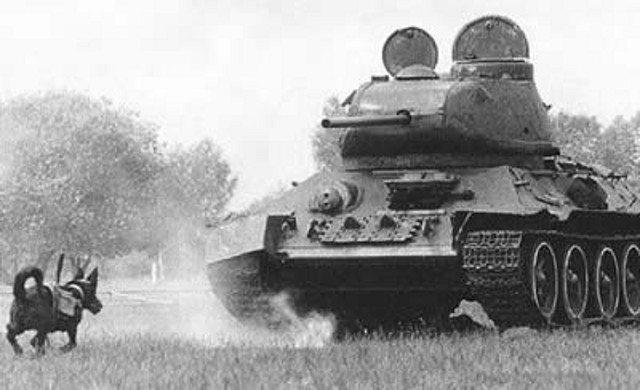 bronie II wojny światowej 5