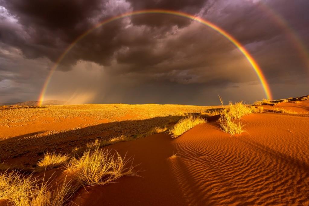 Park Narodowy, Namibia - najpiękniejsze turystyczne fotografie