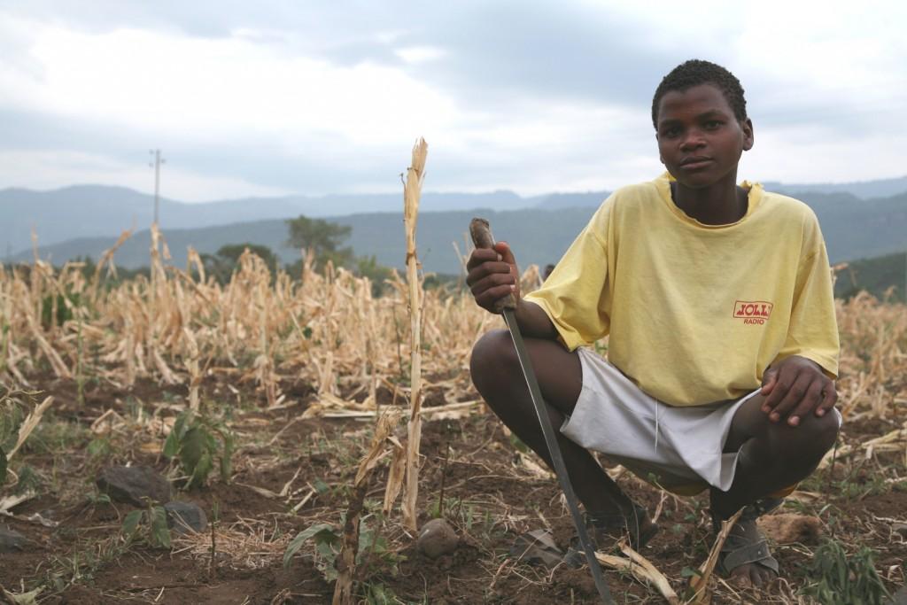 Następstwem El Nino są susze i głód
