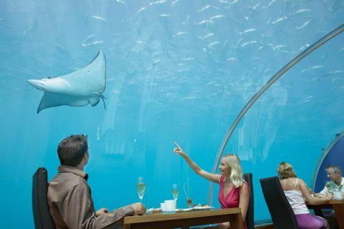 najdziwniejsze restauracje świata
