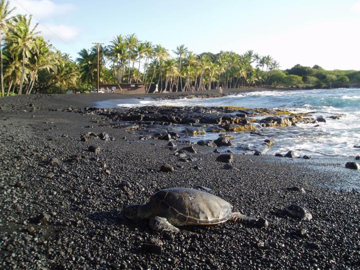 najpiękniejsze plaże z czarnym piaskiem