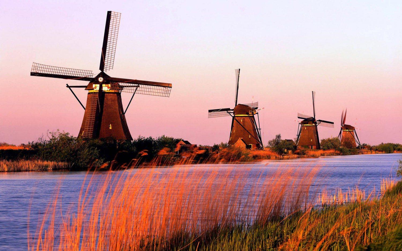 Jaka waluta obowiązywała przed wprowadzeniem euro w Holandii?