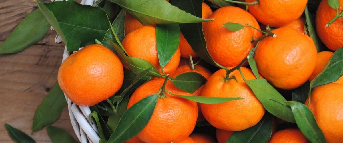 dlaczego warto jeść mandarynki