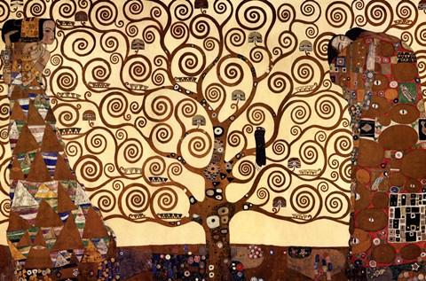 drzewozycia