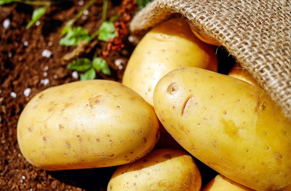 potatoes-vegetables-erdfrucht-bio-162673