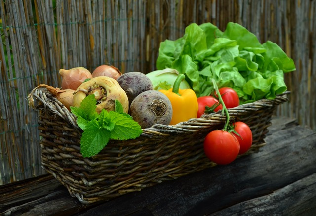 vegetables-vegetable-basket-harvest-garden (1)